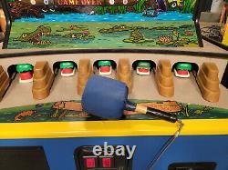 Wacky Gator Redemption Arcade Game Machine WORKING! (Dino Bonk / Whack a Mole)